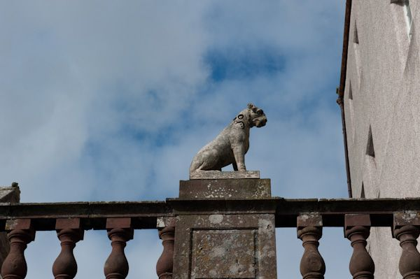 Delgatie Castle photo, Dog Statue