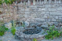 The friary well