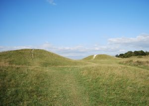 Devil's Humps Barrows