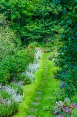 A colourful garden path