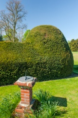 Sundial and topiary hedges