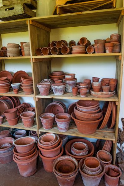 Home of Charles Darwin (Down House) photo, Greenhouse plant pots