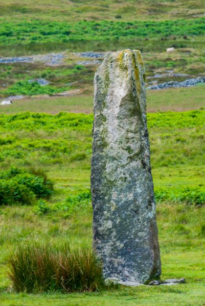 Drizzlecombe Stone Rows photo, The north row standing stone