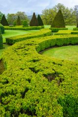 Drumlanrig Castle, Clipped hedges in the gardens