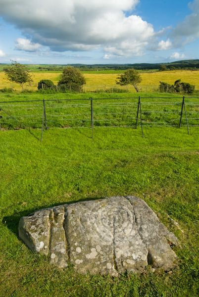 Drumtroddan Cup and Ring Marked Rocks photo, Cup and ring marks 2