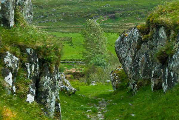 Dunadd Fort photo, Looking down through the defences