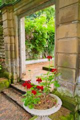 A garden arch and flowers