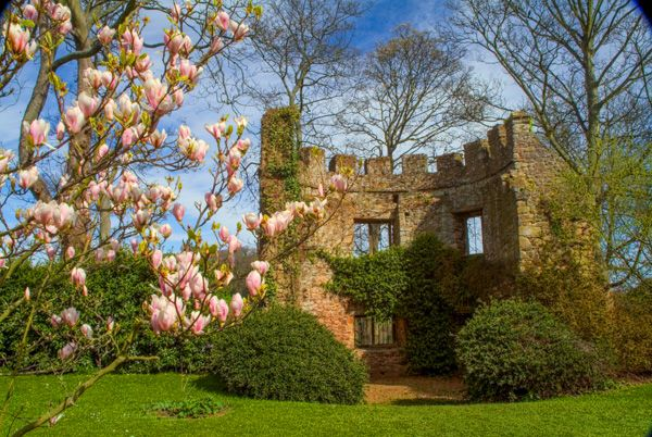 Dunster photo, Medieval tower in the grounds of Dunster Castle