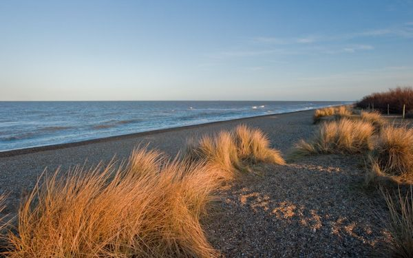 Dunwich photo, Dunwich Heath