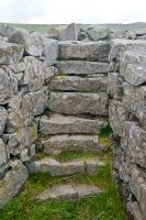 Edin's Hall Broch, Steps inside the wall thickness