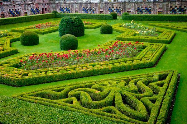Edzell Castle photo, Formal gardens - fleur-de-lys