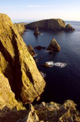 Fair Isle, West Cliffs (c) Dave Wheeler