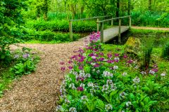 A flower-lined path and bridge