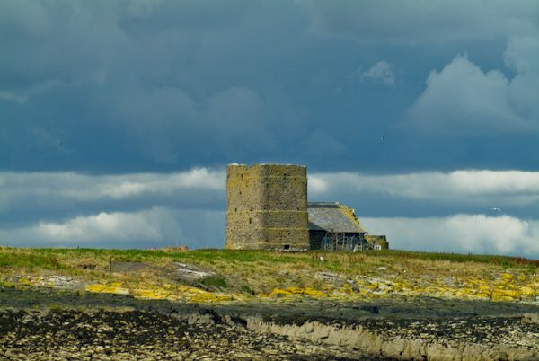 Farne Islands photo, Brownsman Island