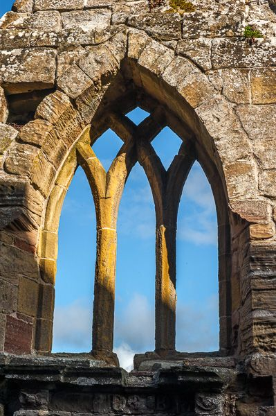 Fearn Abbey photo, Traceried window in the Ross aisle