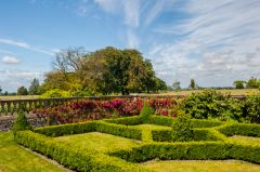 Clipped hedges in the formal gardens