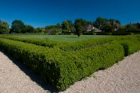 Fishbourne Roman Palace, Roman garden, hedges