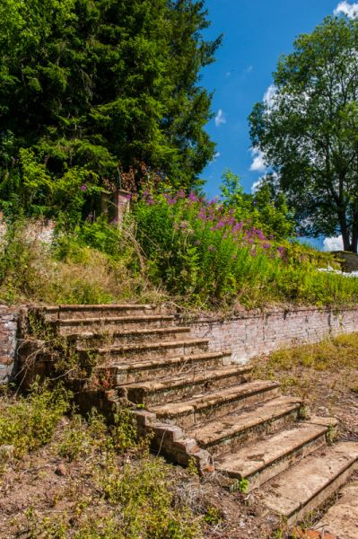 Fyne Court photo, Steps in the walled garden