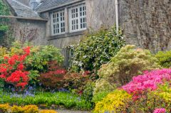 The manor house and spring colour