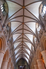 The nave vaulting