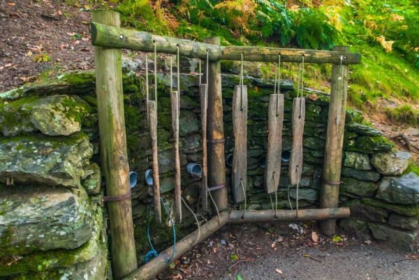 Grizedale Forest Park photo, An unusual, organic musical instrument