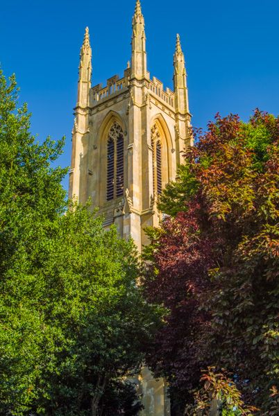 Hampton Lucy, St Peter ad Vincula Church photo, The tower top through the trees
