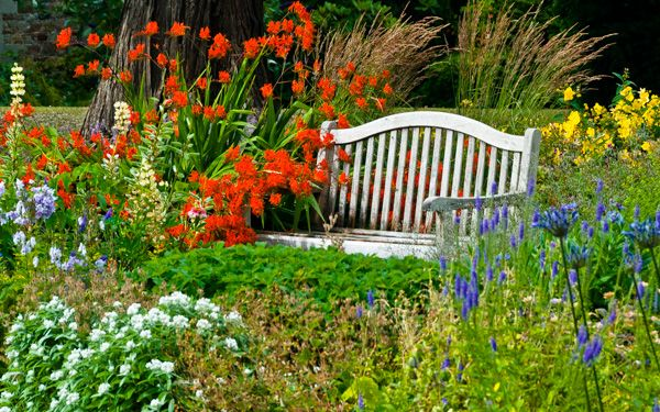 Harmony Garden photo, A garden bench surrounded by colourful flowers