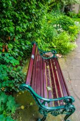 Bronte Parsonage Museum, A bench in the garden