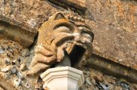 Hitcham, All Saints Church, Gargoyle