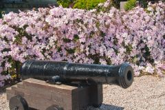 A cannon welcomes visitors!