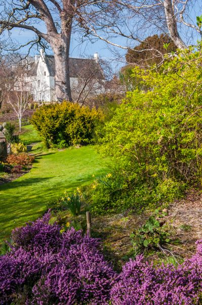 Inveresk Lodge Garden photo, Looking towards the Lodge