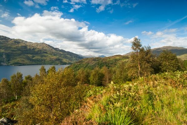 Loch Lomond photo, Rob Roy's View