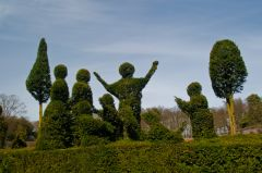 Fanciful topiary in the formal gardens