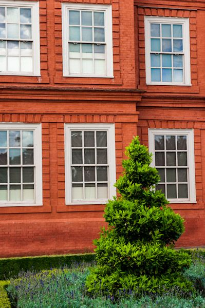 Kew Palace photo, Topiary in the Palace garden