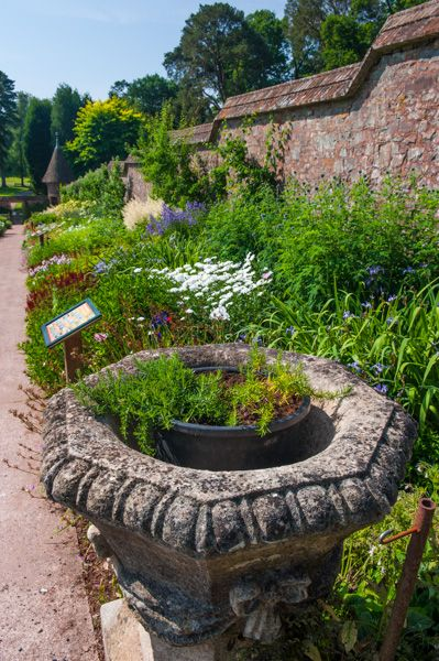 Knightshayes Court photo, Kitchen Garden borders