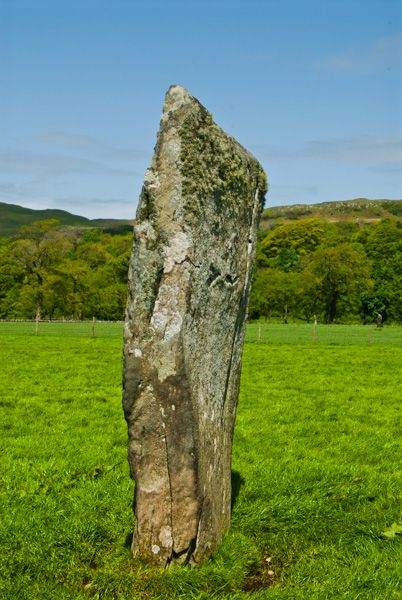 Nether Largie Standing Stones photo, Part of the stone row