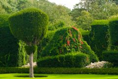Levens Hall, Fanciful topiary in the gardens