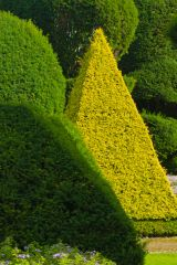Levens Hall, A topiary pyramid