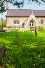 The churchyard in spring