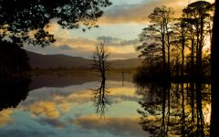 Cairngorms National Park, Loch Mallachie at sunset
