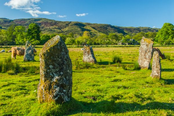 Lochbuie Stone Circle photo, Cows wander among the standing stones