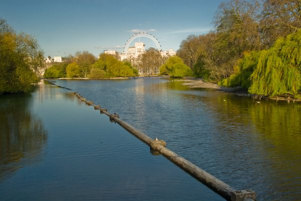 London photo, Whitehall from St James Park