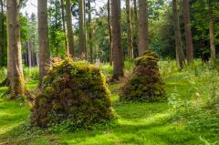 Lowther Castle and Gardens, A cairn in the Sweet Scented Garden