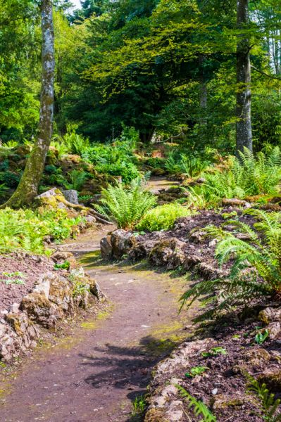 Lowther Castle and Gardens photo, A trail through the Rock Garden