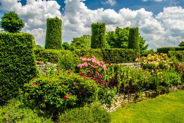 Lytes Cary Manor photo, The glorious gardens in summer