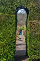 Malleny Garden, Looking through the clipped hedge