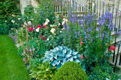 Mellerstain House, Colourful garden flowers