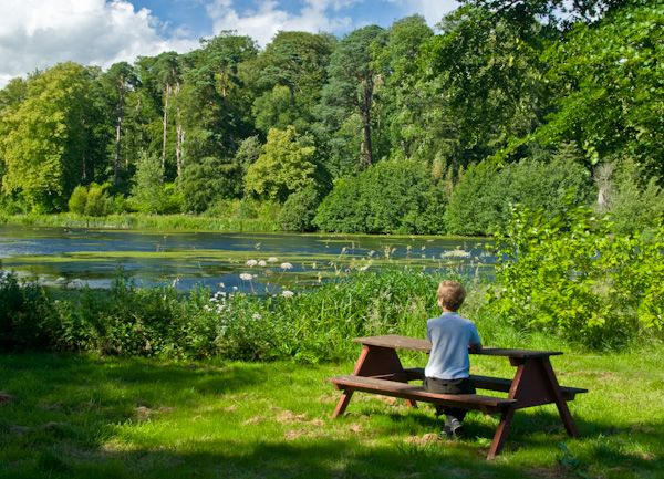 Mellerstain House photo, Picnic area by the lake