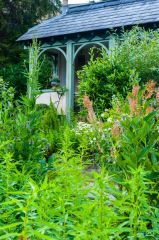 Mill Dene Garden, Lush June greenery at Mill Dene