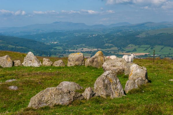 Moel Ty Uchaf Stone Circle photo, Looking across the valley - with sheep